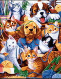 CATS AND DOGS - DIY PAINT BY NUMBERS KIT