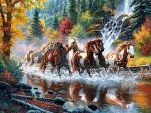 PLAYFUL HORSES - DIAMOND PAINTING KIT
