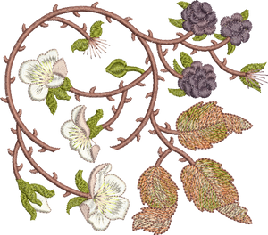 Bramble and Berry 2 Embroidery Motif - 01 - Embroidery Favourites by Sue Box