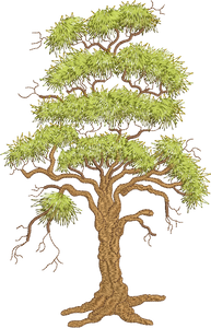 Tall Oak Tree Embroidery Motif - 02 -  Woodland Treasures - by Sue Box