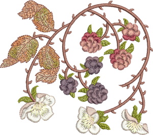 Bramble and Berries Embroidery Motif 1 - 04 -  Embroidery Favourites by Sue Box