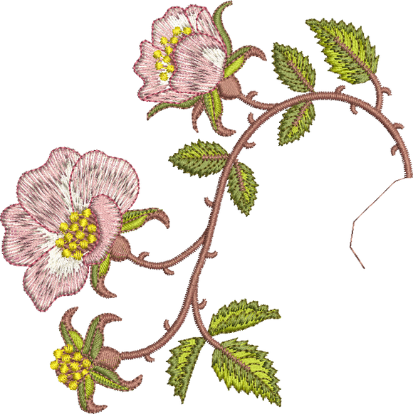 Briar Border 2 Embroidery Motif - 15 - Golden Classic - by Sue Box