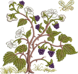 Blackberries Embroidery Motif - 17 -  Woodland Treasures - by Sue Box