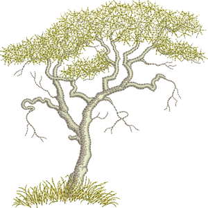 Acacia Tree Embroidery Motif - 18 - Zoo Babies by Sue Box