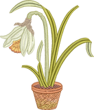 Daffodil Flower Bulb 1 Embroidery Motif - 18 -  Embroidery Favourites by Sue Box