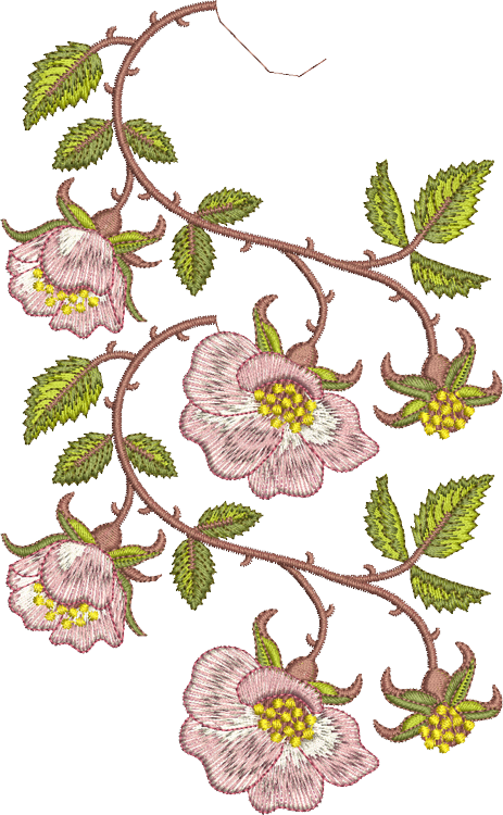 Briar Border 2 Double Design Embroidery Motif - 19 - Golden Classic - by Sue Box