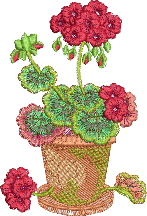 21 - Geranium In Pot