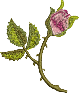 Rose Bud Embroidery Motif by Sue Box