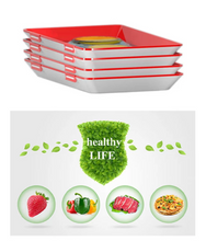 Load image into Gallery viewer, Food Preservation Tray - 3 Pack