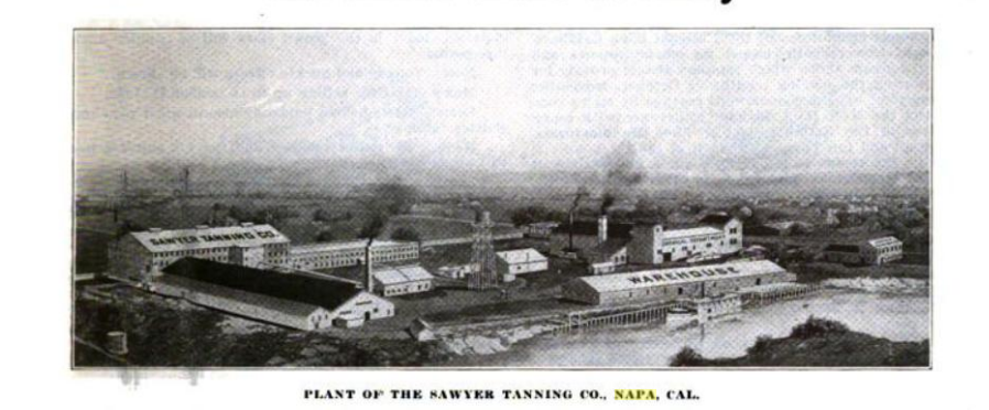 NAPA LEATHERS 1869 SAWYER TANNING CO