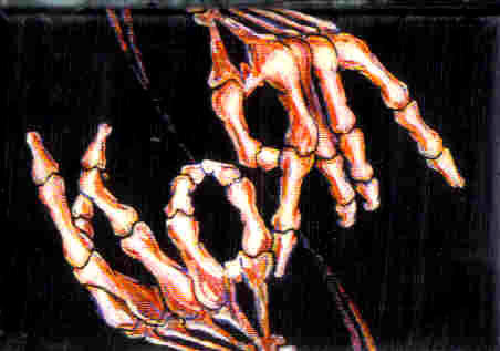 Korn Skeleton Hands Magnet