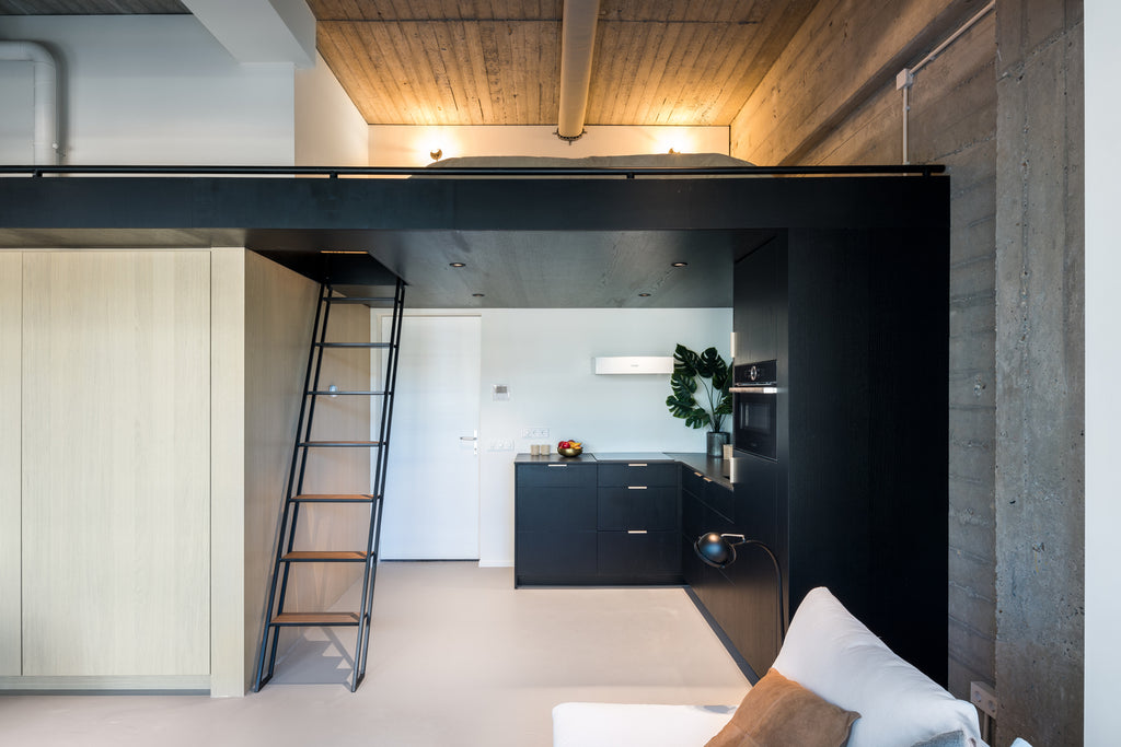 Urban Lofts: Adaptive Re-use Architecture and Small Living