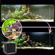 Load image into Gallery viewer, Eco-Aquarium Water Purifying Magic Cube