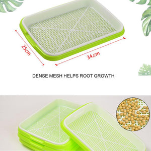1 Set Of Double-layer Seedling Tray - Vecostark