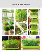 Load image into Gallery viewer, 1 Set Of Double-layer Seedling Tray - Vecostark