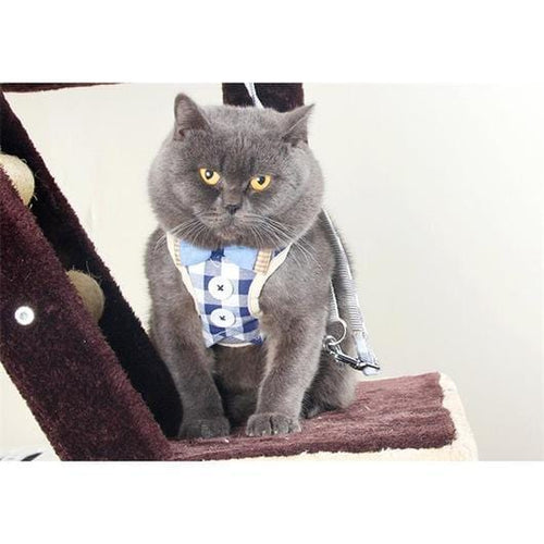 Button Down Cat Harness