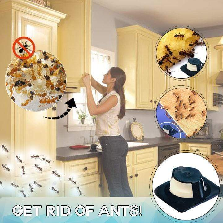 Full Frontal Ant Eliminator 6PCS