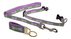 "Preston Ribbons ""Cape Cod Bone on Light Green"" Collar and Leash, SMALL Dogs, FREE Matching Key Ring"