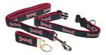"Preston Ribbons ""Peppermint Stick"" Collar and Leash, MEDIUM/LARGE Dogs, FREE Matching Key Ring"