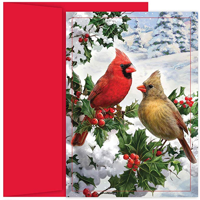 Bird Christmas Cards (#1186)<br>NEW! by Masterpiece Studios