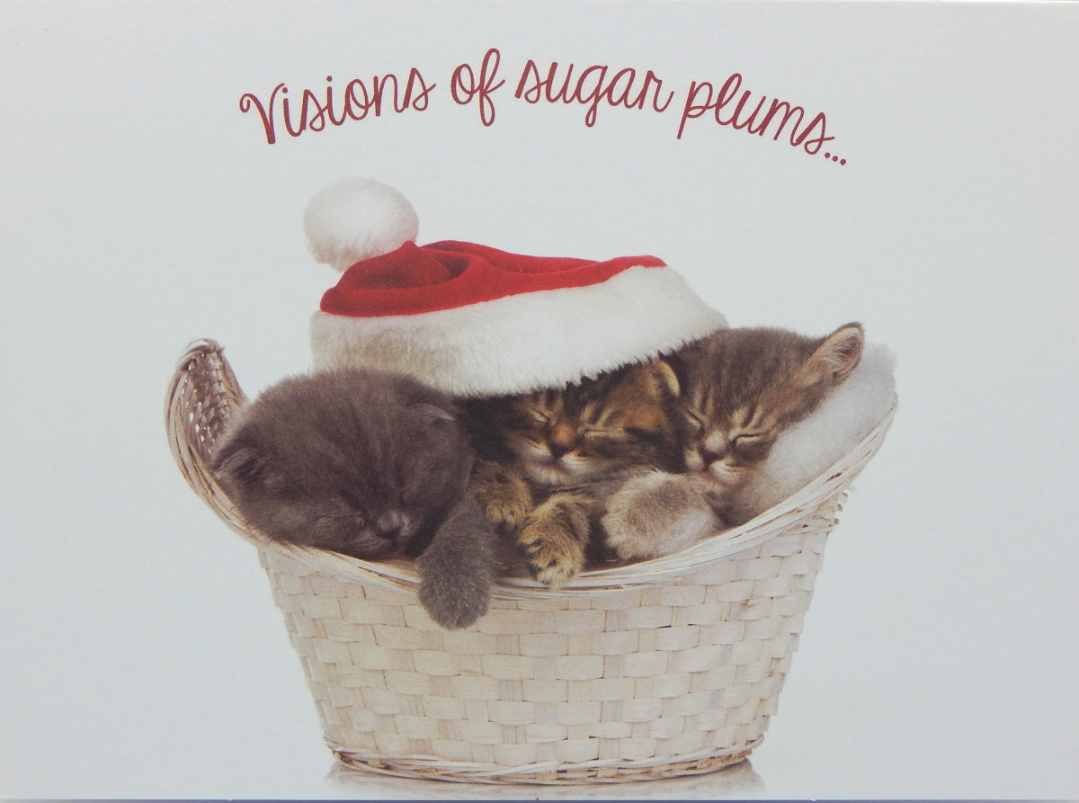 "Cat Christmas Cards (#1213)<br>4 ASSORTED!<br><font color=""red""><b>SMALLER CARD</b></font><br>NEW! by Masterpiece Studios"