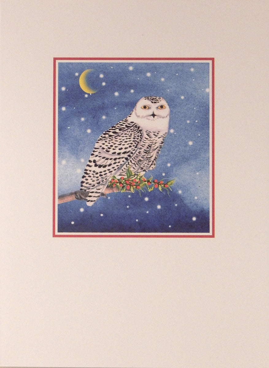 "Bird Christmas Cards (#970)<br><font color=""red""><b>SMALLER CARD</b></font><br>by Shirley Bell"