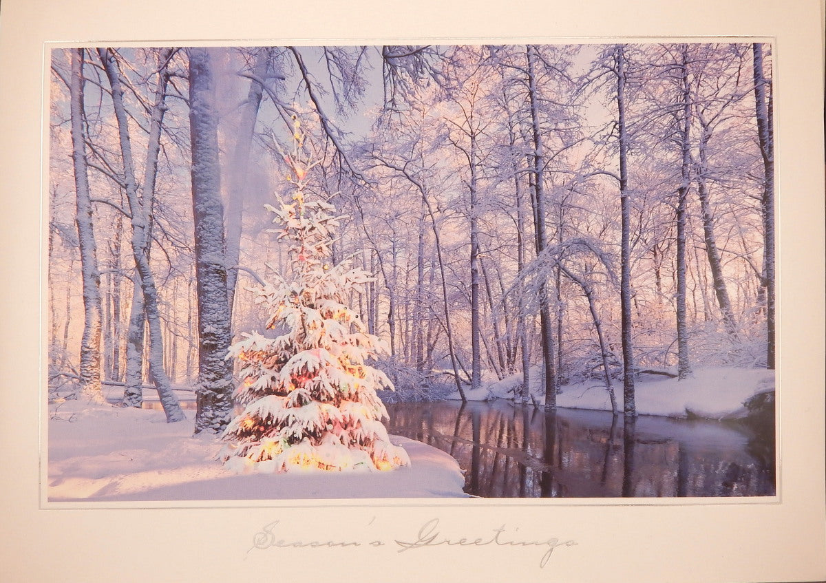"""Season's Greetings""<br>Scenic Christmas Cards (#972)<br>by Masterpiece Studios"