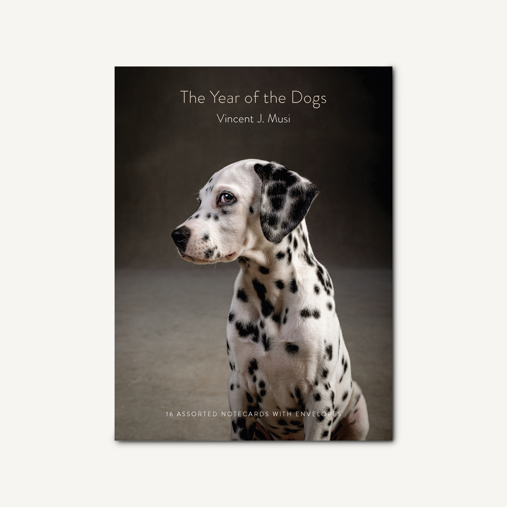 The Year of the Dogs Notecards Set (16 per set) - Hello World