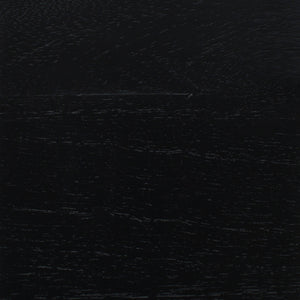 Black Color Swatch for Delancey 2 Door Cabinet