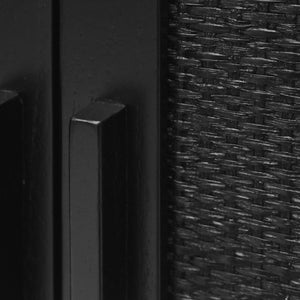 Natural Woven Rattan on Delancey 2 Door Cabinet in Black