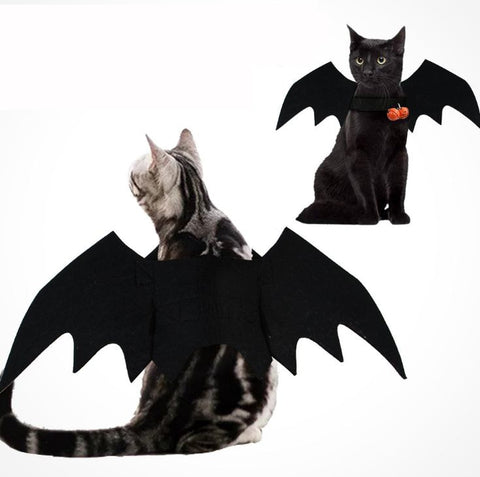 Bat Wings For Cat