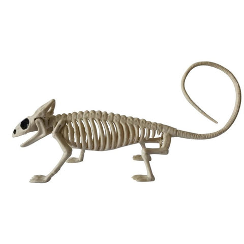 Image of Skeletons Animals