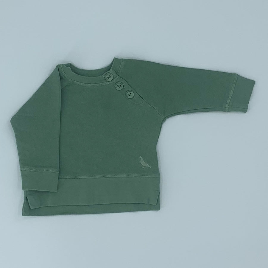 Hardly Worn Pigeon Organics pale green sweater size 3-6 months