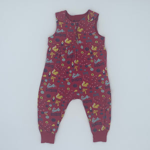 Needs TLC Picalilly squirrel romper dungarees size 12-18 months
