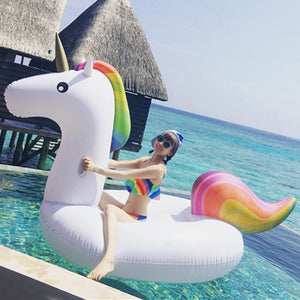 Giant Unicorn Float