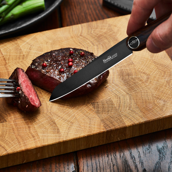 JANUS Steakmesser 2er Set