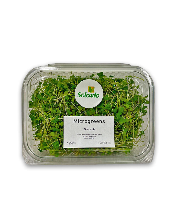 Soleado Microgreens - Broccoli
