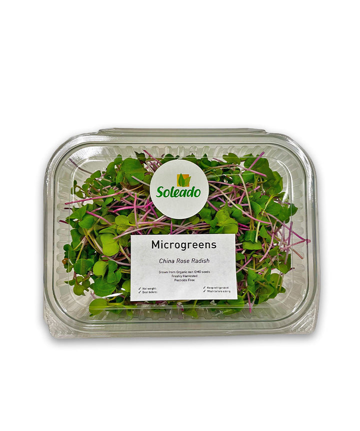 Soleado Microgreens - China Rose Radish