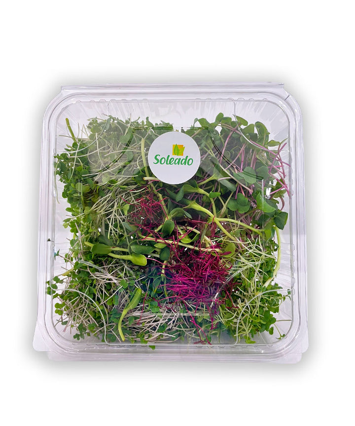 Soleado Microgreens - Salad Mix
