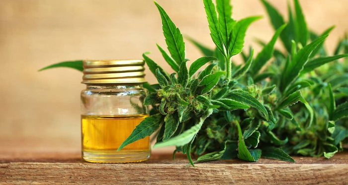 How much CBD should I take? | CBD Dosage Guide