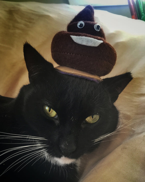 Poop Emoji Cat Hat