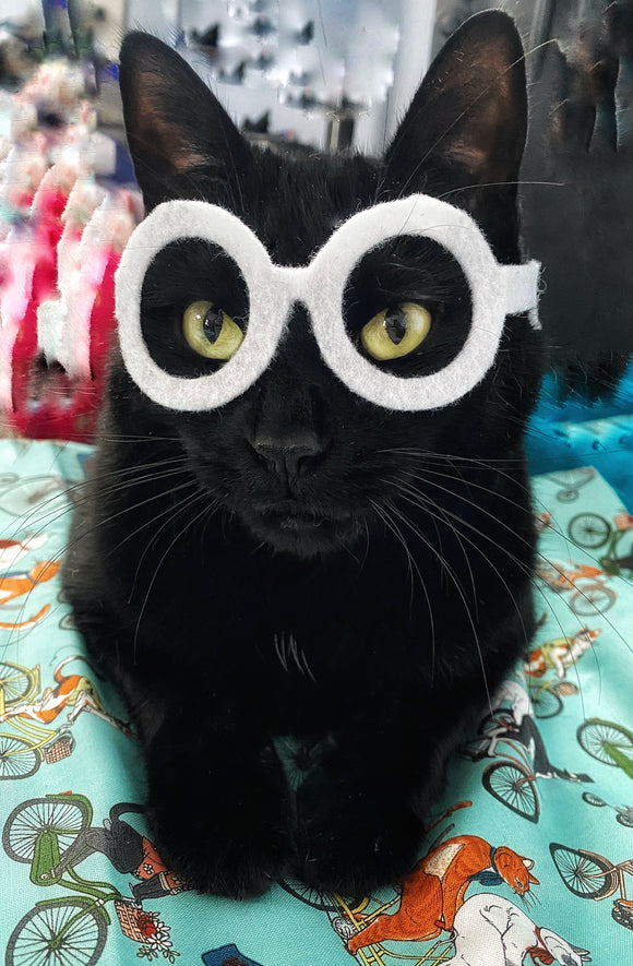 Iris Apfel -inspired glasses for cats