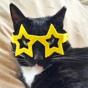 Star Glasses for Cats