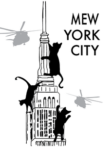 Mew York City Postcard