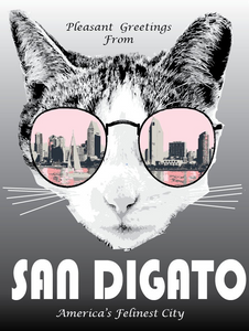 San Diego Cat Postcard