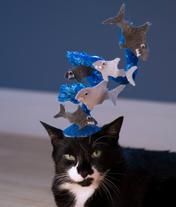 The Sharknado Cat Hat