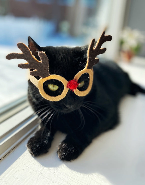 Rudolph Glasses for Cats