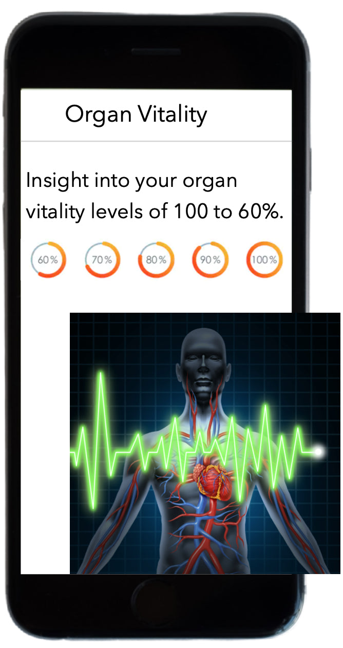 Know you organs and their vitality levels, when you do a DNA test at Water Fusions.