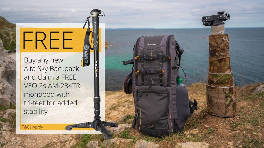 Buy Any Alta Sky and claim a VEO 2S AM-234TR monopod free