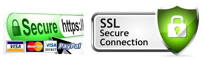 SSL protecte your information